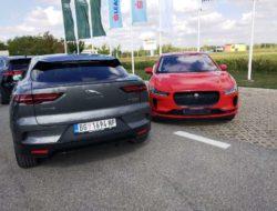 Jaguar I - Pace stigao u SrbijuJaguar I - Pace stigao u Srbiju