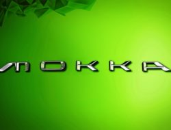 mokka logo